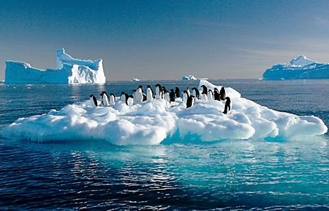 calotte-polari