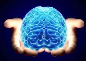 Forever Young: Il Cervello Puo' Rallentare l'Invecchiamento
