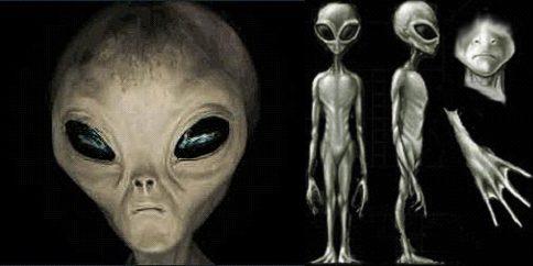 I Grigi non sarebbero alieni ma cloni umani