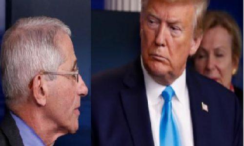 Trump lancia dubbi su Fauci sui casi di COVID-19