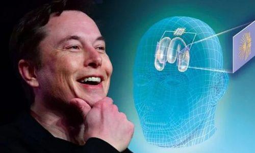 Elon Musk supporta il chip cerebrale e il transumanesimo contro l'intelligenza artificiale